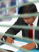Businessman Reading a Document — Stock Photo