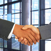 Shaking Hands To Seal An Agreement — Stock Photo