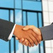Businessmen Greet Each Other By Shaking Hands — Stock Photo #5847622