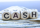 Dollars Cash And Cash In Words — Stock Photo