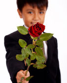 Boy Holding Up A Rose For A Girl — Stock Photo