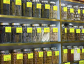 Chinese Herbal Medicines — Stock Photo