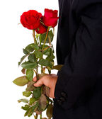 Giving Roses For Valentines — Stock Photo