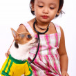 Loving Girl Taking Care Of Her Pet Chihuahua — Stock Photo