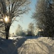 Snowy road - Stock Photo