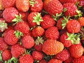 Strawberry close up - berry background — Stock Photo