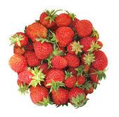 Circle-shaped strawberries isolated on white — Stock Photo
