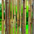 Bamboo background on green blurry background with copyspace — Stock fotografie