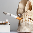 Human skull with cigarettes against isolated white background — Stock Photo #5683472