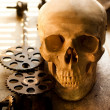 Stock Photo: Cogs taken out from humskull for further inspection
