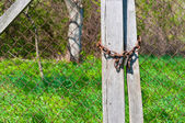 Padlock on wooden fence with brigh green grass in background — Stock Photo