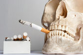 Human skull with cigarettes against isolated white background — 图库照片