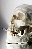 Skull with burning cigarette in mouth — Stock Photo