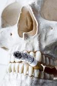 头骨与烧嘴里的香烟 — 图库照片