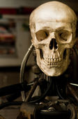 Human skull on robot body close up — Stock Photo