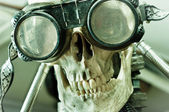 Human skull with insane look and goggles (robot) — Stock Photo