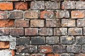 Abandoned brick wall texture — Stock Photo