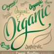 Royalty-Free Stock Imagem Vetorial: Organic hand lettering set (vector)
