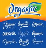 Organic hand lettering set (vector) — Stock Vector