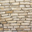 Limestone wall — Stock Photo #5647990