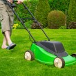 Green grass is mowed lawn mower - Zdjęcie stockowe