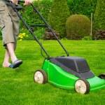 緑の草は刈られた芝生芝刈り機です。 — ストック写真