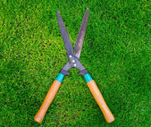 Clippers on the green grass — Stock Photo