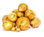 Fresh potatoes on a white background — Stock Photo