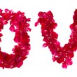 Pink rose petals forming letter love on white — Stock Photo