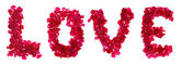 Pink rose petals forming letter love on white — Foto Stock