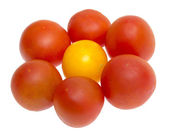 Red and yellow tomatoes isolated on a white — Stock Photo