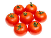 Red tomatoes isolated on white — Stock Photo