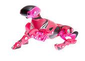 Pink robot dog on a white — Stock Photo