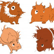 Guinea pigs - Stock Vector