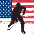 Stock Vector: Hockey player in front of USflag