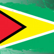 Grunge flag series-Guyanese — Stockfoto