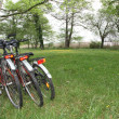 Bicycles in countryside — Foto Stock