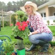 Woman planting flowers - 