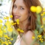 Portrait of beautiful woman in brooms field — Stock Photo