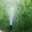 Stock Photo: Closeup on sprinkler