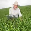 Royalty-Free Stock Photo: Farmer examining crop with laptop computer