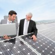Business standing by solar panels — Stock Photo