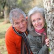 Portrait of senior couple in countryside — Stock Photo #5698065