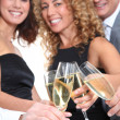 Group of friends cheering with glasses of champagne — Stock Photo #5699051