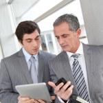 Businessmen meeting — Stock Photo #5699514