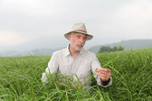 Senior man with hat in farmland — Stock Photo