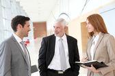 Business negotiation — Stock Photo
