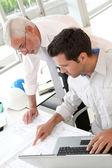 Arquitetos, trabalhando no planejamento — Foto Stock