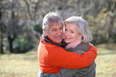 Senior couple in countryside — Stockfoto