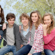 Foto Stock: Group of teenagers